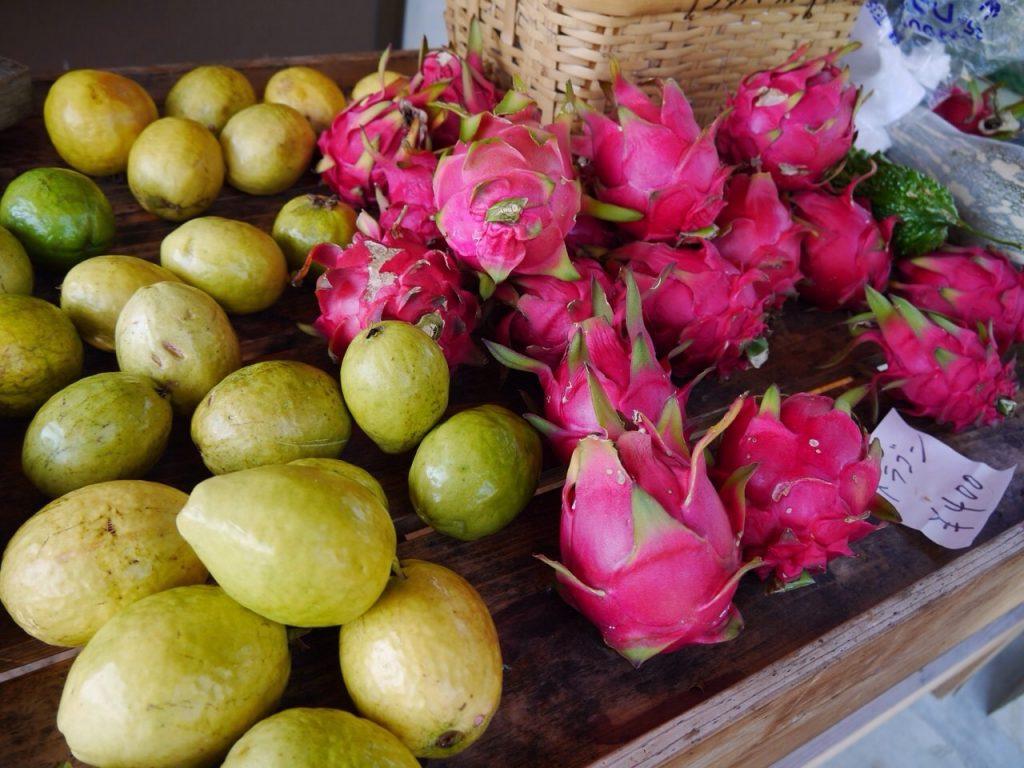 屋久島のドラゴンフルーツとグァバ