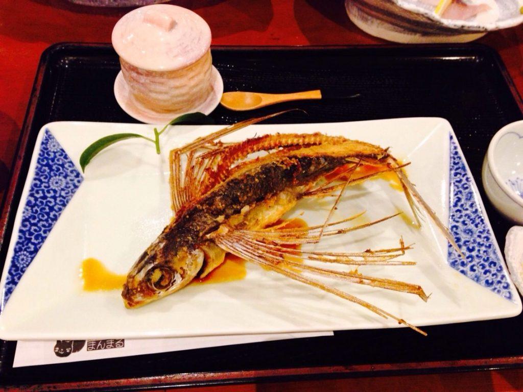 屋久島の飛び魚