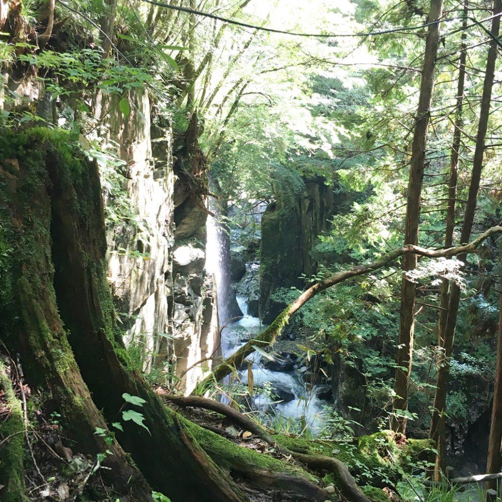 付知峡 滝 吊り橋 行き方