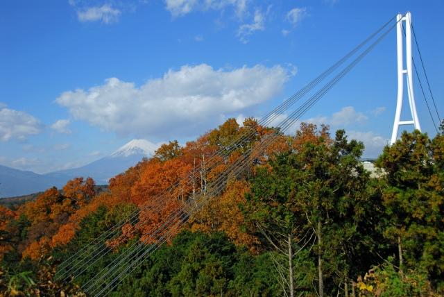 三嶋スカイウォークと富士山
