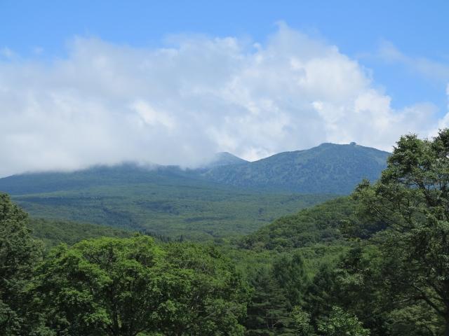 八甲田山を見上げる