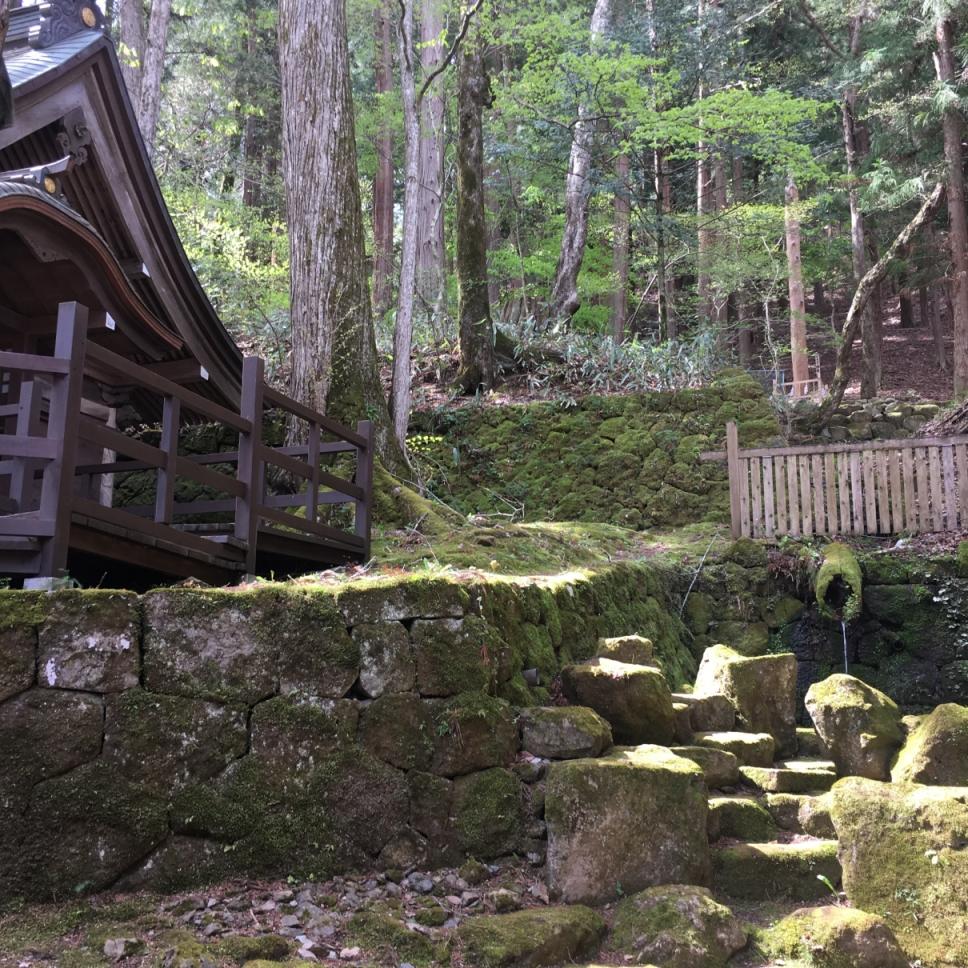 諏訪大社 本宮 お気に入りの場所