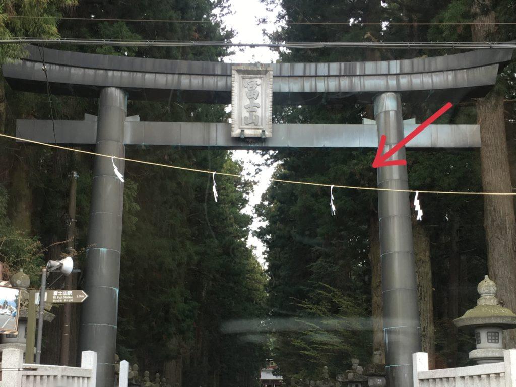 神社の紙垂の縄