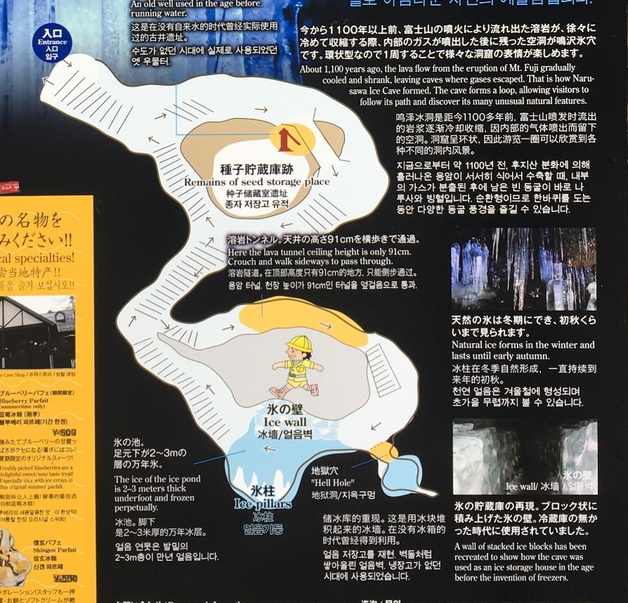 鳴沢氷穴 全体マップ
